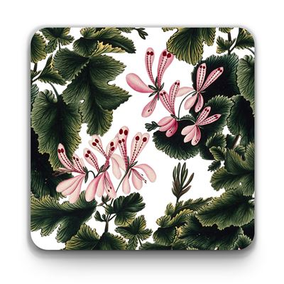 'An Ornamental Geranium' coaster