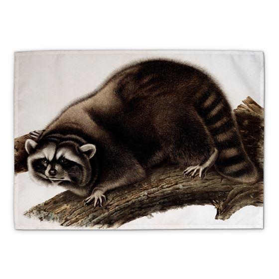 John James Audubon 'Raccoon' tea towel