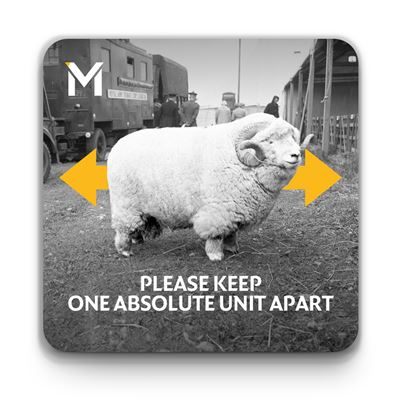 'Please Keep One Absolute Unit Apart' coaster