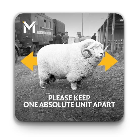 'Please Keep One Absolute Unit Apart' coaster