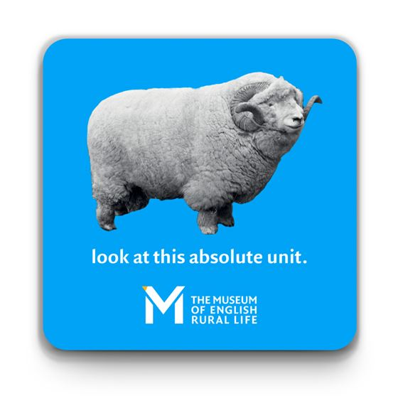 'The Absolute Unit' coaster – blue