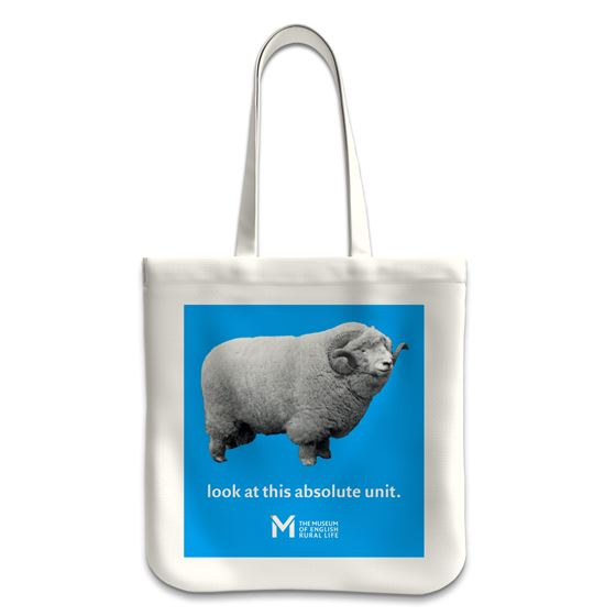 'The Absolute Unit' tote bag – blue