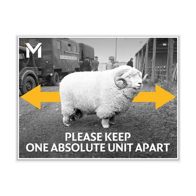 'Please Keep One Absolute Unit Apart' poster