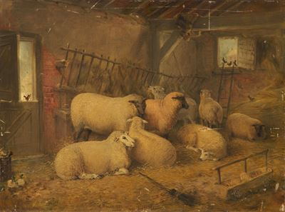 Sheep in a Stable