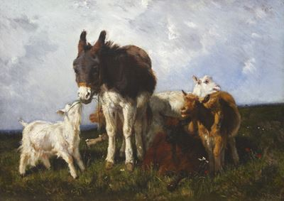 Donkey and Goats