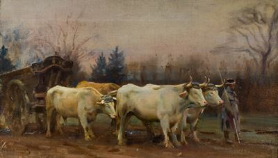 White Oxen, Baron Robert's Estate, Chantilly