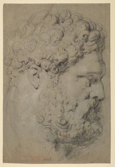 Head of the Farnese Hercules