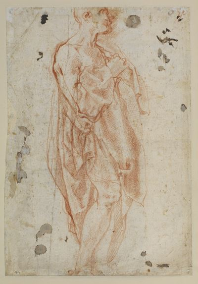Study for Saint Jerome